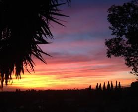cropped-sunset.jpg